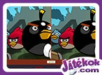 Angry Birds Differences 2