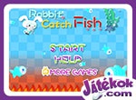 Rabbit Catch Fish