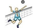 Volleyball Typing